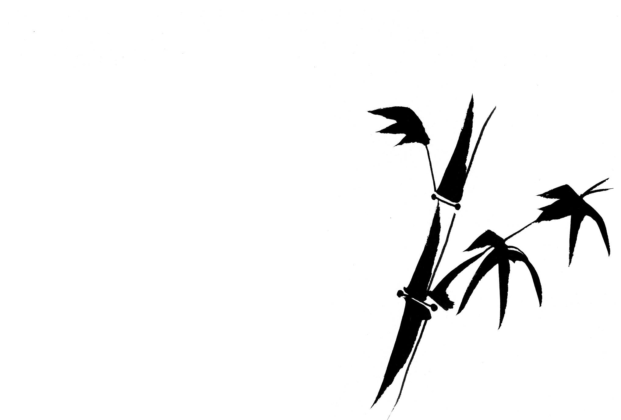 竹の画像 p1_22
